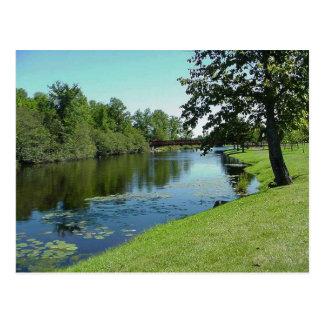 Wisconsin Medford Stream River Water Park Picnic Postcard