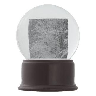 Wisconsin Winter Snow Globe