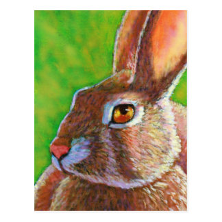 Wise Bunny Postcard