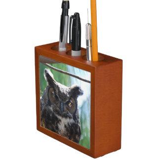Wise Long Eared Owl Desk Organiser