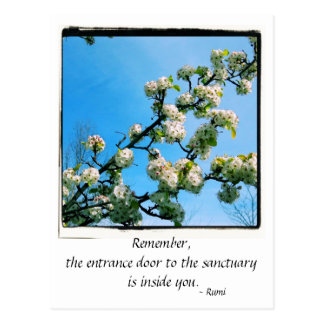 Wise Quotes Spring Floral Postcard