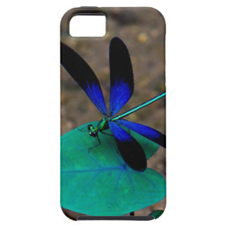 Wish Upon a Dragonfly iPhone 5 Case