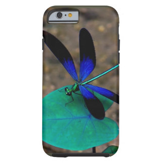 Wish Upon a Dragonfly iPhone 6 case