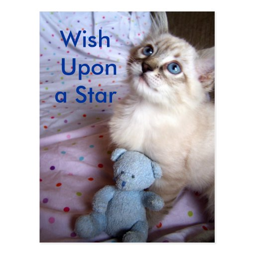 Wish upon a star Postcard