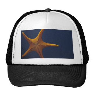 Wish Upon a Starfish Cap