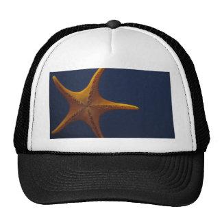 Wish Upon a Starfish Trucker Hat