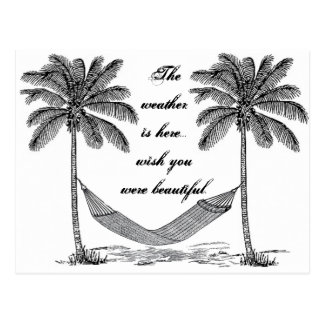Wish you were beautiful vintage palm tree postcard