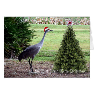 Wishing You a Merry Christmas Card
