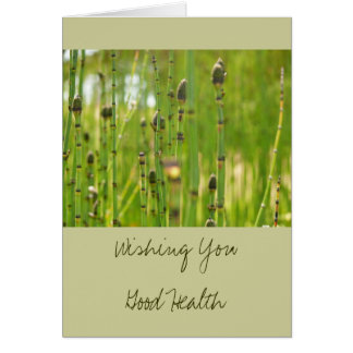 Wishing You Good Health Greeting Card