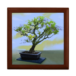 Wisteria Bonsai Tree Gift Box
