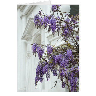 Wisteria, Historic Charleston  South Carolina Card