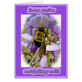 Wisteria & Male Carpenter Bee Get Well Card