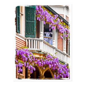Wisteria on a Vintage Southern  Home in Savannah Postcard