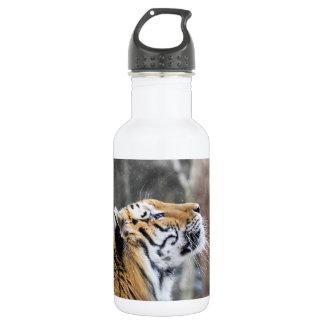 Wistful Winter Tiger 532 Ml Water Bottle