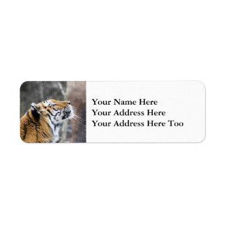 Wistful Winter Tiger Return Address Label