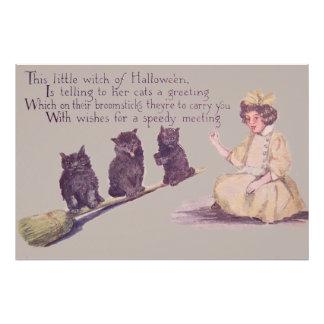 Witch Black Cat Broom Photo Art
