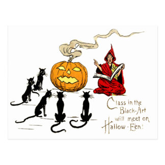 Witch Teaching Black Cat Jack O' Lantern Postcard