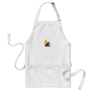Witches Hat Apron