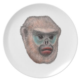 WITH A GLANCE PLATE