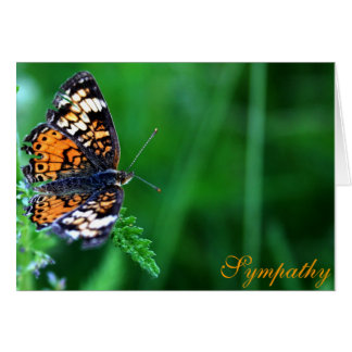 With Deepest Sympathy Butterfly Design Greeting Card