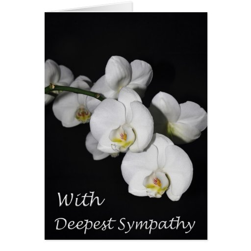 With Deepest Sympathy Orchid Flower Greeting Card