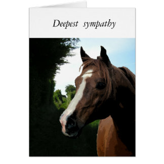 With Sympathy (loss of a horse) Card