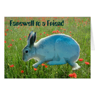 With Sympathy (loss of a rabbit) Card