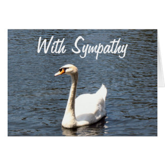 With Sympathy white swan Card