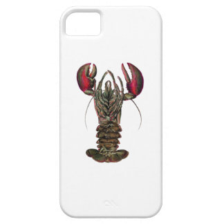WITHIN ITS REACH iPhone 5 CASE