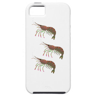 WITHIN THE BAY iPhone 5 CASES