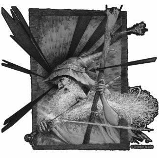 Wizard Under Fire Photo Sculpture