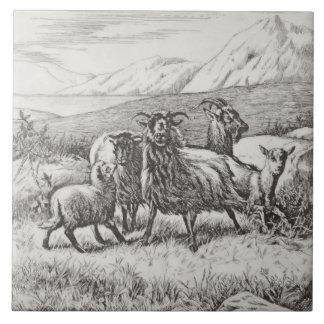 Wm Wise Minton Farm Animals Goats Tile Repro c1879
