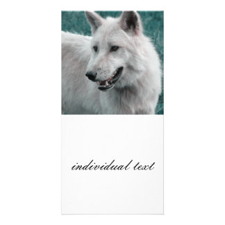 wolf 05 personalized photo card