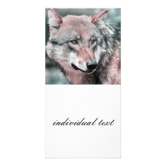 wolf 1115 personalized photo card