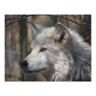 Wolf 11 Cm X 14 Cm Invitation Card