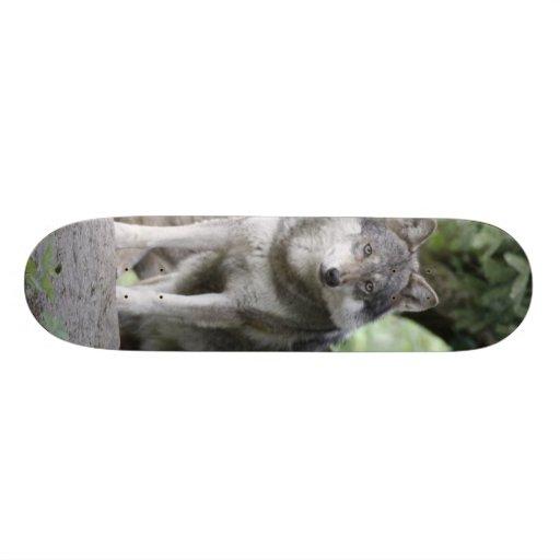 Wolf 14AJ Skate Board