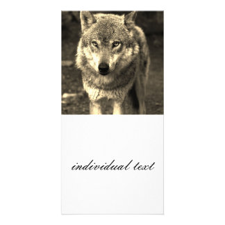 Wolf 215 photo card template