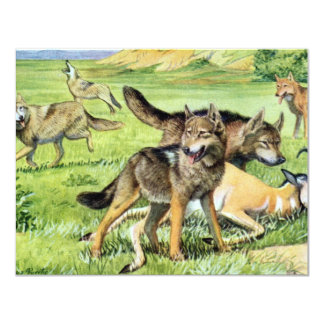 wolf and coyote 11 cm x 14 cm invitation card