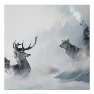 Wolf and Deer