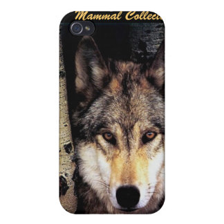 Wolf Behind Bars iPhone 4 Cover