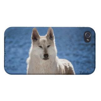 Wolf Case Savvy iPhone 4 Case
