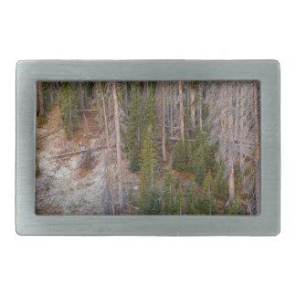 Wolf Creek Pass Forest Landscape Belt Buckles