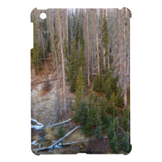 Wolf Creek Pass Forest Landscape iPad Mini Cases