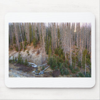 Wolf Creek Pass Forest Landscape Mouse Pad
