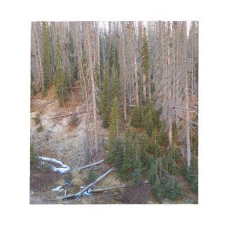 Wolf Creek Pass Forest Landscape Notepad