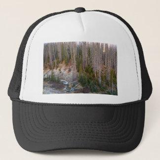 Wolf Creek Pass Forest Landscape Trucker Hat