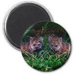 Wolf Cubs 6 Cm Round Magnet