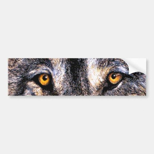 Wolf Eyes Bumper Sticker
