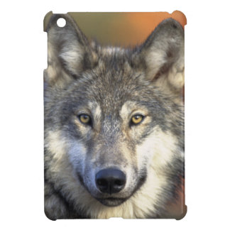 Wolf Face Cover For The iPad Mini