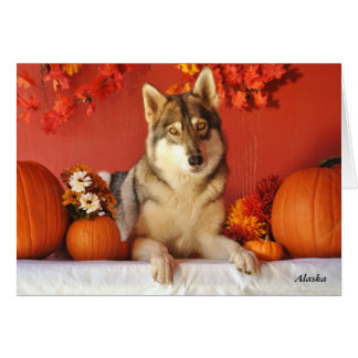 Wolf Fall Holiday Greeting Card